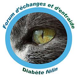Diabète du chat Index du Forum