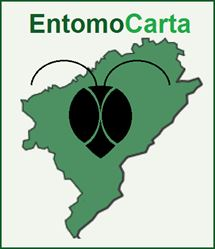 EntomoCarta Index du Forum